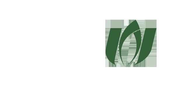 سازمان نظام صنفی رایانه ای